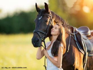Pferdevollkasko, Informationen zum Versicherungsschutz